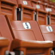 Seat grandstand. — Stock Photo