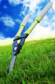 Grass Shears — Photo