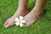 The skin of the foot — Stock Photo