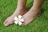 Huden på foten — Stockfoto