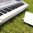 Piano — Stock Photo #51346133
