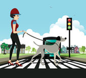 Woman walking dog — Stock Vector