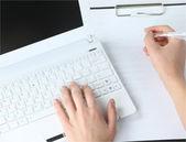 Menselijke handen bezig met laptop op office achtergrond — Stockfoto