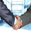 Closeup of a business hand shake between two colleagues — Stock Photo #12694521