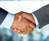 Closeup of a business hand shake between two colleagues — Photo