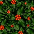 A Holly Pattern Background for Christmas.  — Stock Photo