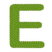 Four Leaf Clover of Alphabet Letter E — Stock Photo