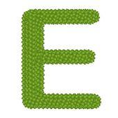 Four Leaf Clover of Alphabet Letter E — Стоковое фото