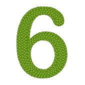 Four Leaf Clover of Alphabet Numbers 6 — 图库照片