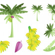 Set of Banana Tree with Bananas and Blossom — Stock Vector