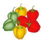 A Set of Colored Bell Peppers on White Background — Stock Vector