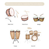 Set of Drum Instruments with Sticks on White Background — Stock Vector