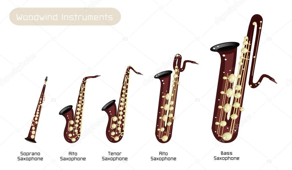 Diversi tipi di sassofono musica su sfondo bianco - Diversi tipi di musica ...