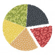 Set of Different Beans in Pie Chart Concept — Stock Photo