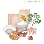 Benefícios de saúde e nutrição de alimentos ricos em carboidratos — Vetorial Stock