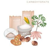 Health and Nutrition Benefits of Carbohydrate Foods — Stock Vector