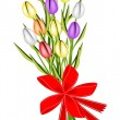 Beautiful Fresh Tulip Bouquet with Red Ribbon — Stock Vector