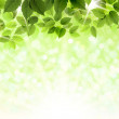 Summer branch with fresh green leaves — Stock Vector #33360519