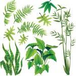Plants — Stock Vector #36910429