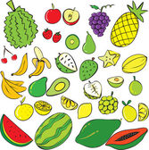 Tropical Fruits — Stock Vector