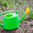 Stock Photo: Green Watering Can