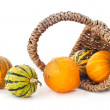 Pumpkins in basket — Stock Photo