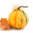 Stock Photo: Decorative pumpkin with autumn leaves