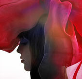 Profile of woman with drapery. — Stock Photo