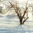Winter time — Stock Photo #32686597