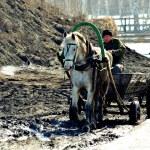 Guzhevoy transport — Stock Photo