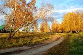 Sonbahar etüdler — Stok fotoğraf