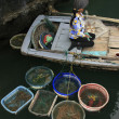 Hawker in a boat, Halong bay, Vietnam — Stock Photo