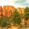 Around Fairyland point, Bryce Canyon National Park, Utah, USA — Stock Photo