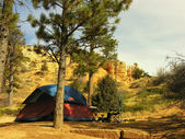 Sunset campground, Bryce Canyon National Park, Utah, USA — Stock Photo