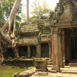 Preah Khan temple, Angkor area, Siem Reap, Cambodia - Stock Photo