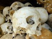 Schädel der opfer, killing fields, phnom penh, kambodscha — Stockfoto
