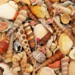 Variety of colorful sea shells — Stock Photo