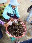 Kobieta sprzedaje smażone owady, kambodża — Zdjęcie stockowe