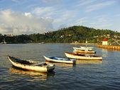 Oude boten in haven samana — Stockfoto