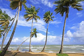 Las Terrenas beach, Samana peninsula, Dominican Republic — Stock Photo