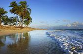 Las Terrenas beach, Samana peninsula — Stock Photo