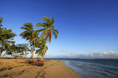Las Terrenas beach, Samana peninsula — Stock Photo