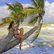 Young woman in bikini sitting on palm trees — Stock Photo