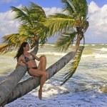 Young woman in bikini sitting on palm trees — Stock Photo