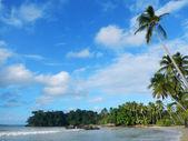 Bonita strand, schiereiland samana — Stockfoto