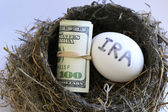 Nest with money and egg with IRA on it — Stockfoto