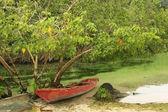 Rybářský člun sladkovodní řece, rincon beach, poloostrov samana — Stock fotografie