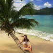 Young woman in bikini sitting on leaning palm tree at Rincon bea — Stock Photo #25905133