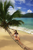 Young woman in bikini sitting on leaning palm tree at Rincon bea — Stock Photo