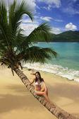 年轻女子坐在瑞康倾斜棕榈树上的比基尼在东亚银行 — 图库照片